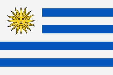 Uruguay Flag Vector Flat Icon