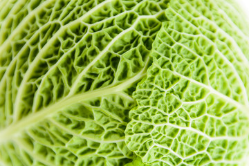Close-up view of the crumpled structure of a green cabbage leaf.