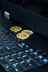 Bitcoin, litecoin ethereum on PC in the server room, golden coins, souvenirs coins, copy vertical. Business concept: cryptocurrency fever