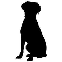 Brittany Spaniel Dog Silhouette Vector Graphics