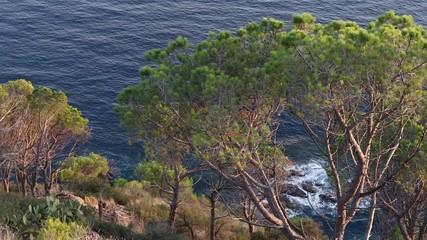 Wall Mural - Landscape of Tossa de Mar coast in Costa Brava. Spain.