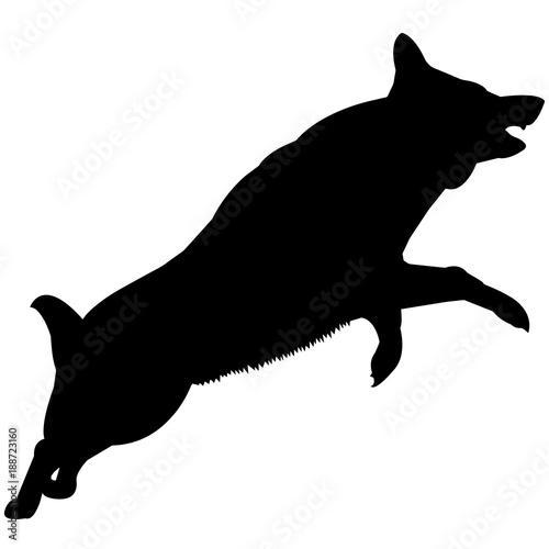 german shepherd dog silhouette vector graphics stock image and