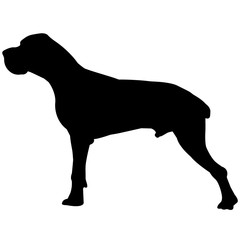 Great Dane Dog Silhouette Vector Graphics