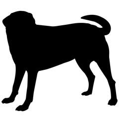 Labrador Retriever Dog Silhouette Vector Graphics