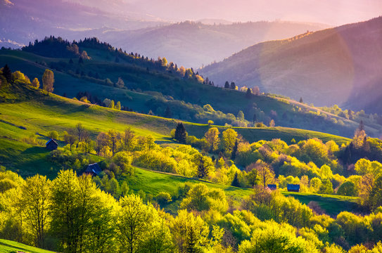 rural landscape of Carpathians in springtime. Spectacular view of grassy rolling hills in evening
