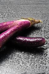 Solanum melongena Truëng Aubergine Melanzana Μελιτζάνα perlina Patlidžan Psianka podłużna Баклажан Eggplant