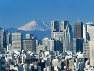 Wall Mural - 新宿高層ビル街と富士山