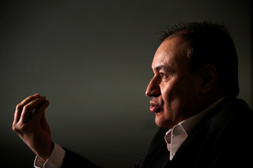 Alfonso Durazo, who will be appointed as Public Security Minister for the National Regeneration Movement (MORENA), gestures during an interview with Reuters in Mexico City