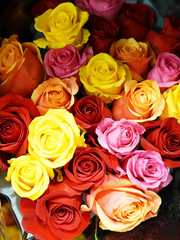 close up on colorful rose in a bouquet