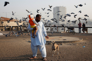 A man carries his son as he plays with a street dog early morning at China Creek in Karachi, Pakistan