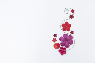 Beautiful paper flower arrangement on white paper texture background, flower card background