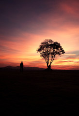 Silhouette Man Walk to Big Tree and Mountain Landscape among Colorful Sky Sunset