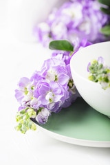 Fototapete - Beautiful spring flower on the white table