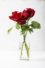 Wall Mural - Red fresh roses on the white table