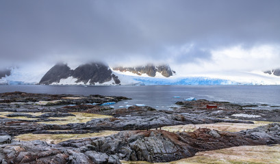 Rocky coastline panorama with mountains and blue glaciers hidden in clouds, Peterman island, Antarctic peninsula