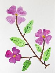 Hand painted Dogwood flowers