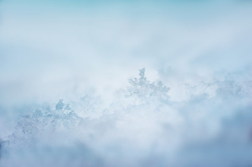 Winter beautiful photo. Snowflake macro. Background and space for your text.