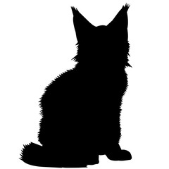 Maine Coon Cat Silhouette Vector Graphics