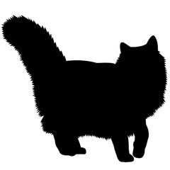 Norwegian Forest Cat Silhouette Vector Graphics