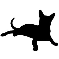 Oriental Cat Silhouette Vector Graphics