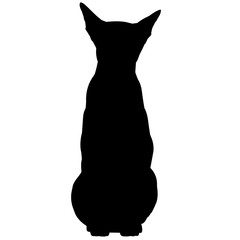 Oriental Cat Silhouette Vector Graphics