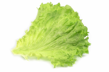Fresh salad leaf, lettuce leaf isolated on white background, with clipping path