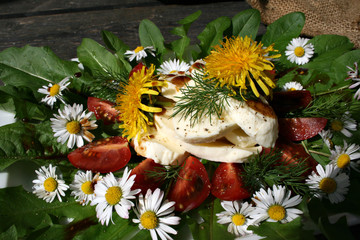 organisch, lifestyle, tomate, mozzarella, salat, wilkräuter, sliced, werbetafel, modern, neu