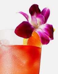 Close-up of cocktail glass with orchid flower garnish
