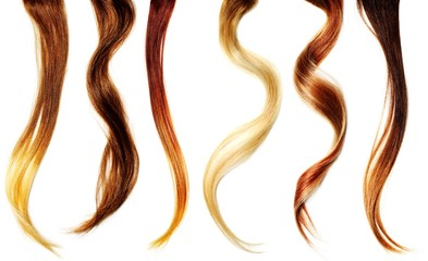 Close-up of six strands of various hair colors and textures