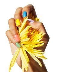 Close-up of woman's hand with bright fingernails holding fistful of yellow flower petals