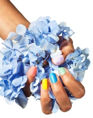 Close-up of woman's hand with bright fingernails holding fistful of blue hydrangea petals