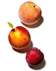 Close-up of nectarine, peach, and plum against white background