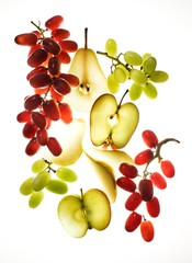 Backlit fruit slices and grapes
