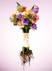 Wrapped bouquet of flowers with roots