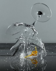 Shattered martini glass breaking