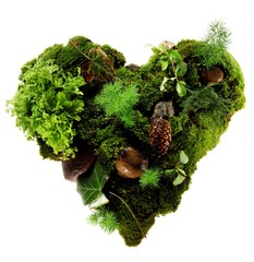 Heart made of green moss, leaves, rocks and pinecone