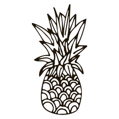 Hand drawn pineapple of black outline isolated on white background. Cartoon pineapple. Vector illustration.