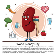 World kidney day infographic cartoon icon vector illustration graphic design