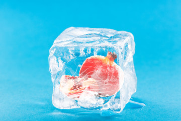 Pomegranate Frozen Inside Ice Cube