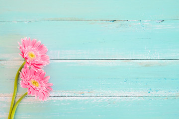 Wall Mural - Pink flowers on vintage wooden in blue paint background, vintage pastel color tone - concept flower of spring or summer background