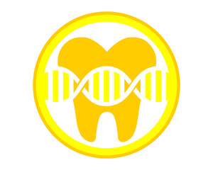 yellow circle cell tooth teeth dental dentist dent image icon