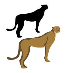 cheetah  black silhouettevector illustration flat style profile