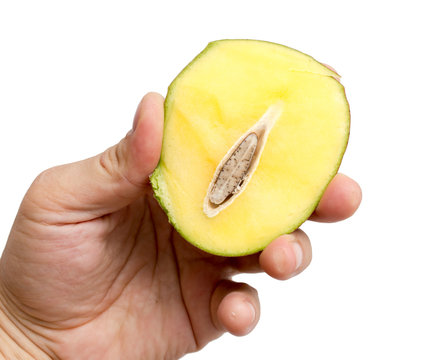 Mango in hand on a white background
