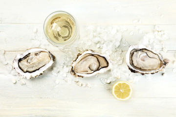 Overhead photo of oysters with wine and lemon, with copy space