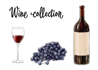 Bottle of red wine with a glass and grape cluster isolated on white background. Wine collection. Vector illustration.