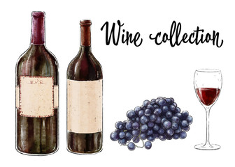 Two bottles of red wine with a glass and grape cluster isolated on white background. Wine collection. Vector illustration.