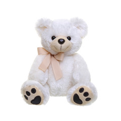 Teddy bear on a white