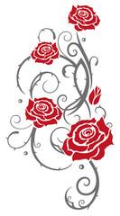Rote Rosen mit Dornen und Blättern. In love.