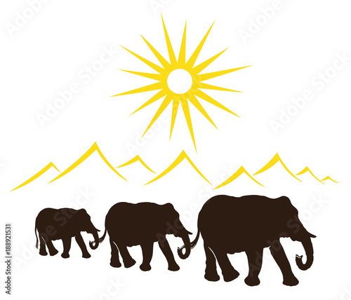 Elefanten In Der Wüste Urlaub Reise Stockfotos Und Lizenzfreie