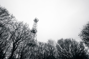 Small lighthouse tower in a forest with tree silhouettes